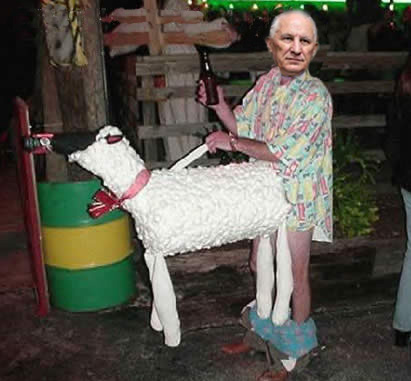 matija-sheep-costume