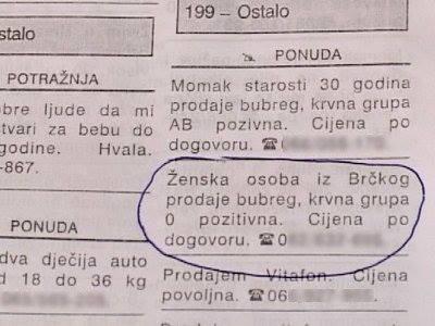 bubreg