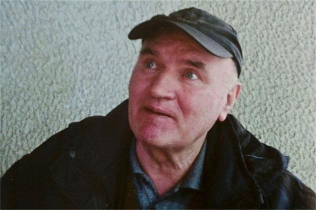 Haški tribunal privremeno je oslobodio Ratka Mladića za potrebe snimanja filma Emira Kusturice, saopštili su danas iz Sudskog vijeća Haškog Tribunala.