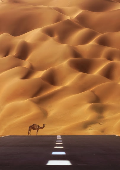 The Road To The Empty Quarter