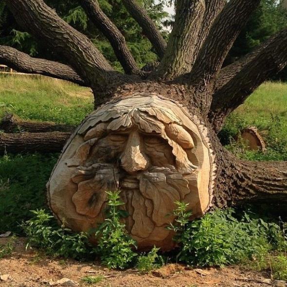 na jarinju otkriven spomenik jovanu raskovicu