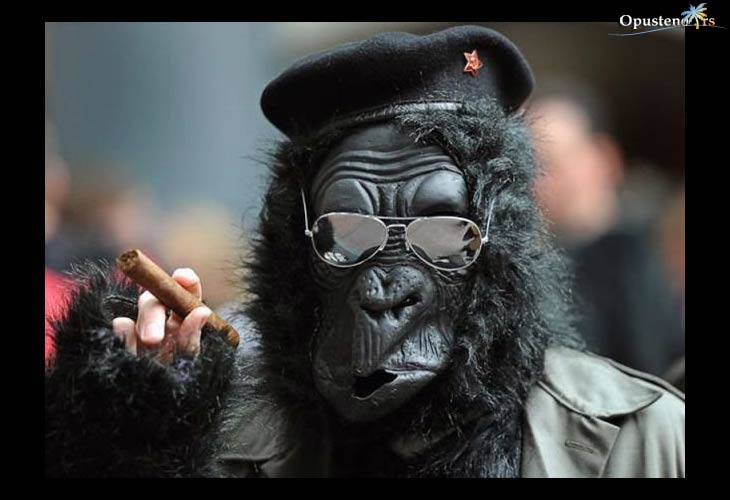 majmun-policajac