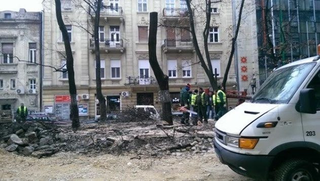 PEVAC UBIJEN U TIŠINI: Gradski urbanisti uništili kultnu baštu Beograda